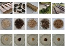 Determination of Total Mercury Content and Trace Metal Analysis in Wood Materials—Part 1: ICP-OES Using Mercury Cold Vapor
