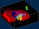 Ultrasensitive 3D Confocal Raman Imaging