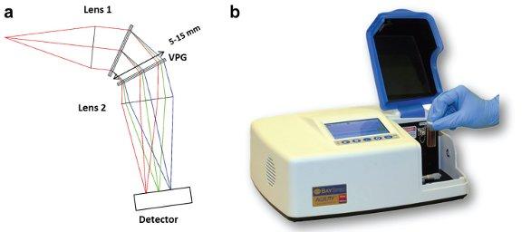 A Portable Multiexcitation Dispersive Raman Spectrometer For
