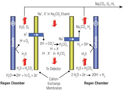 Reagent-Free Ion Chromatography Systems With Eluent Regeneration ...