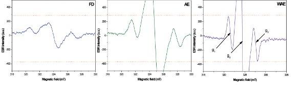 Advanced Electron Paramagnetic Resonance Spectroscopy for
