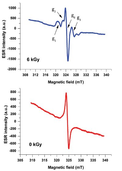 Advanced Electron Paramagnetic Resonance Spectroscopy for the