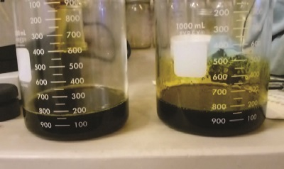 Automating Solvent Removal From Winterized Cannabis Oil Extract
