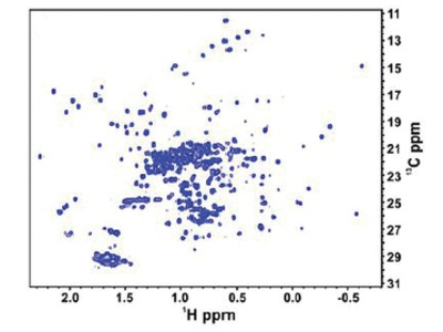 2-D NMR Developments Improve Monoclonal Antibody Characterization