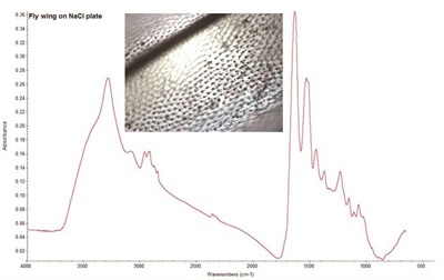 Particulate Analysis of Liquid Filtration Materials and Residues in Food Using FTIR Microscopy