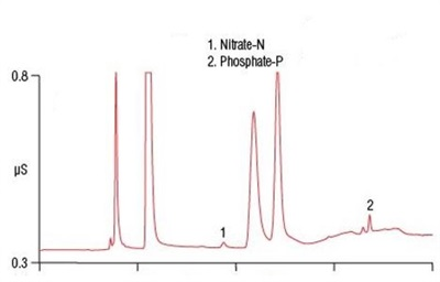 ASTM-Approved Method for Simultaneous Determination of Total Nitrogen and Phosphorus in Wastewater by Ion Chromatography