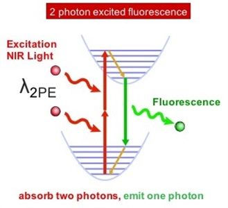 Strategies for Deep Imaging With Multiphoton Microscopy