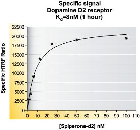 Determination of Association (kon) and Dissociation (koff