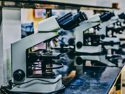 Anatomy of the Microscope - The Concept of Magnification